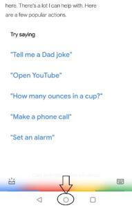 google assistant use